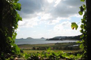 Bretagne 310x205 - Kostenloser Urlaub: als Bio-Erntehelfer auf dem Land