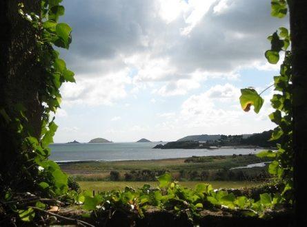 Bretagne 445x330 - Kostenloser Urlaub: als Bio-Erntehelfer auf dem Land