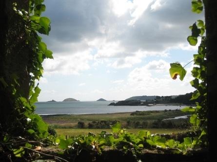 Kostenloser Urlaub: als Bio-Erntehelfer auf dem Land