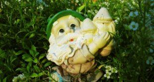 Gartenzwerg 310x165 - Ein heikles Thema, der Gartenzwerg