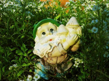 Gartenzwerg 445x330 - Ein heikles Thema, der Gartenzwerg