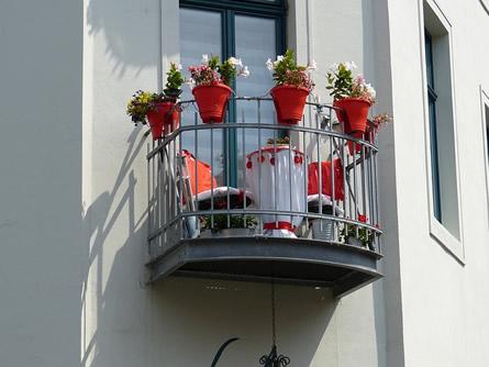 Keine Fehler bei der Balkonbepflanzung
