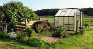 Gewaechshaus 310x165 - Ein Gewächshaus für den Garten