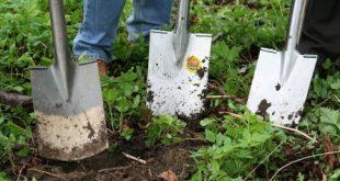 Gaertner 310x165 - Gärtner - Beruf oder Berufung?