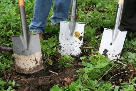 Gaertner - Gärtner - Beruf oder Berufung?