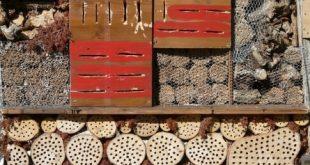 Insektenhotel 310x165 - Insektenhotel - Unterkunft für Krabbeltiere