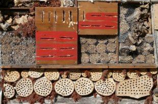 Insektenhotel 310x205 - Insektenhotel - Unterkunft für Krabbeltiere