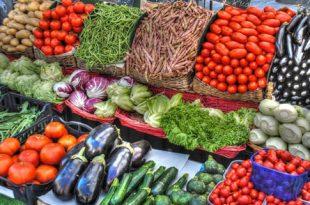 frisches Gemuese 310x205 - Frisches Gemüse richtig lagern