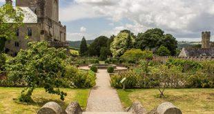 Englischer Garten 310x165 - Romantik im englischen Garten