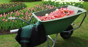 Arbeitsbekleidung 310x165 - Hochwertige Arbeitsbekleidung für Gartenbau und Forstwirtschaft