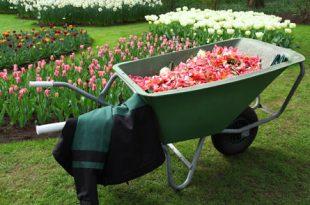 Arbeitsbekleidung 310x205 - Hochwertige Arbeitsbekleidung für Gartenbau und Forstwirtschaft