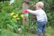Kinderbeet 110x75 - Kinderbeet - welche Pflanzen eigenen sich am besten ?