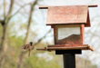 Vogelfutterhaus 110x75 - Vogelfutterhaus – mehr Vögel im Garten