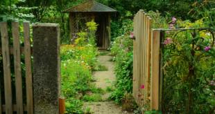 Gartenhaus 310x165 - Makeover – ein neues Bad in der Gartenlaube