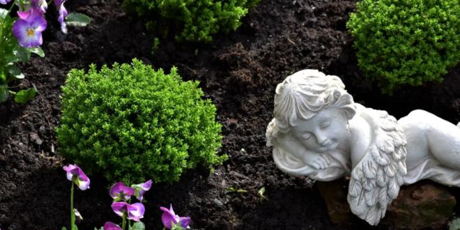 Grabbepflanzung – pflegeleichte Friedhofspflanzen erleichtern die Arbeit